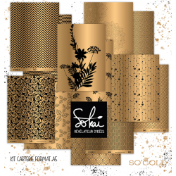 KIT CARTERIE 2 GOLD